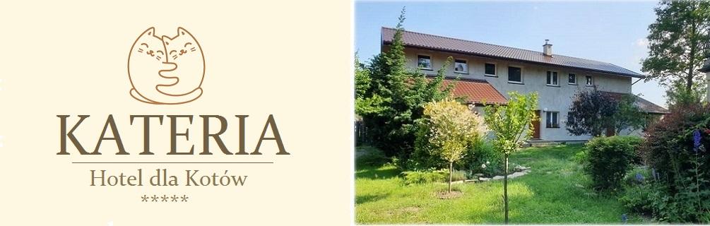 Kateria - hotel dla kotów / pet hotel